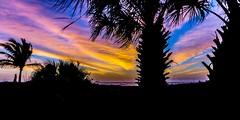 Cocoa Beach Shilouette (m16brooks) Tags: ocean blue orange color beach nature beautiful yellow sunrise palms florida sony palm atlantic palmtrees shilouette a6000