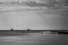 Fishing Boats waiting  in rising Flood Waters (g_heyde) Tags: sl northsea fishingboat nordsee hightide hochwasser niedersachsen flut landreclamation shrimper krabbenkutter landgewinnung priggen spiekaneufeld spi1seehund spi3atlantis