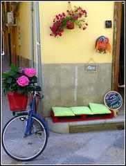 Au coin de la rue (LILI 296....) Tags: fleur bike rue bicyclette vlo palette trapani hortensia chouette sicile coussin croisiredefrance canonpowershotg16