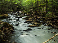 Stream (Grace.Win) Tags: nature water spring woods rocks stream slow hiking connecticut trail shutter stick flowing slowshutterspeed