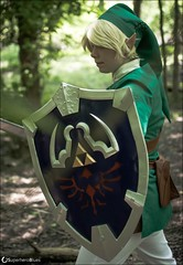 DSC_1767 (superheroblues) Tags: link zelda legendofzelda