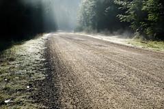 _7507872-Edit.jpg (NSStone) Tags: road mist landscapes dewdrops steam grasses marysville phantomfalls intimatelandscapes