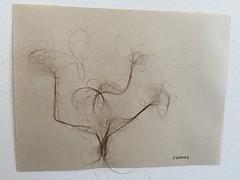 Dibujo orgnico (lauramurillom) Tags: drawing disegno dessin dibujo hair pelo