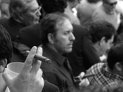 Tabaco (franmunozr) Tags: rey albero corrida cuernos toro monumental picador torero plazadetoros ganaderia cardeno coso lasventas divisa ruedo banderilla torobravo