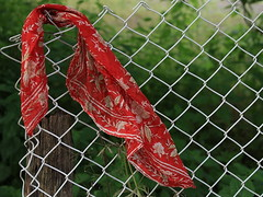 Lost scarf (Sappho et amicae) Tags: scarf fence eljkagavrilovi