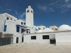 Mosque de la Zaoua, Sidi Bou Sad (    ) (twiga_swala) Tags: tunisia minaret tunis mosque said sidi bou tnez mosque bouganvilla    zawiya  zaoua