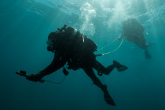 Exercise TRADEWINDS (www.combatcamera.forces.gc.ca) Tags: horizontal training outdoors divers marine day underwater wideshot navy jour mans jamaica tropical extrieur hommes multinational sousmarine plongeurs plandensemble multinationale extradewinds16