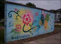 A Bloomin' Wall (Canis Major) Tags: wall artwork colours portishead bloom horticultural britaininbloom