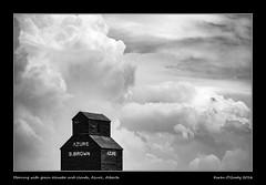Morning with grain elevator and clouds, Azure, Alberta (kgogrady) Tags: summer blackandwhite bw canada building clouds landscape blackwhite wooden farming elevator azure noone ab nopeople alberta fujifilm fujinon grainelevator westerncanada southernalberta xt1 canadianlandscapes cans2s canadianprairies albertalandscapes xf55200mmf3548ois picturesofalberta photosofalberta fujifilmxt1 picturesofgrainelevators photosofgrainelevators