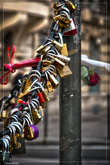 Pont de l'Alma (Brangre SEGURA) Tags: paris toureiffel champdemars arcdetriomphe militaire placedelaconcorde granderoue pontalexandreiii pontdelalma trocadro pontdina fontainedesmers oblisquedelouxor pierretraverse