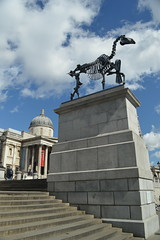 Fourth Plinth: Gift Horse (CoasterMadMatt) Tags: city uk greatbritain england sculpture horse london art westminster square skeleton photography spring artwork nikon photos unitedkingdom britain south capital hans trafalgar trafalgarsquare east photographs gift gb april borough southeast fourth plinth nikond3200 2015 haacke hanshaacke capitalcity cityofwestminster gifthorse fourthplinth d3200 horseskeleton coastermadmatt london2015 coastermadmattphotography april2015 spring2015