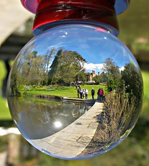 Pashley in a bubble (ttelyob) Tags: ball globe tulips sphere crystalball pashley pashleymanor pashleymanorgardens picmonkey