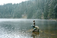 The saga of Mummelsee lake (hokahey) Tags: travel deutschland wanderlust badenbaden schwarzwald mummelsee