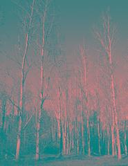 Valderejo, (mmontesfotografo) Tags: nature monochrome landscape monocromo natural paisaje alava euskadi naturephotography landscapephotography euskadipaisvasco