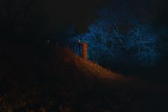 Ambly Nassogne (marcos schmitz) Tags: longexposure light orange lightpainting art colors bulb night canon painting landscape long exposure cyan illumination surreal psychedelic lightart ledlenser