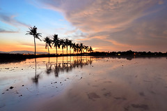 Twilight (nadzli.azlan7) Tags: trees sky cloud reflection tree art nature clouds landscape landscapes amazing artistic bluesky reflect malaysia penang mothernature waterscapes naturelovers amazingsunset burningclouds artofnature