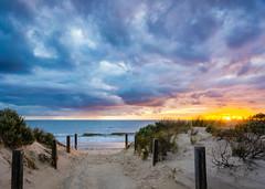 Surfing at West Beach (yecatsiswhere) Tags: ocean sunset beach sand au australia adelaide southaustralia westbeach