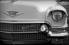 Getting on a bit (flowrwolf) Tags: old light blackandwhite monochrome car metal vintagecar shiny bright cadillac chrome vehicle headlight grille caddie lefthanddrive aworkofart chromebumper gettingon metalgrille mirboonorth cadillacsedandeville americancarsinaustralia arealcar 116in2016 fourwheeledvehicle 116picturesin2016 52picturesin2016 47oldfor52in2016 52i2016 984wheeledvehiclefor116in2016