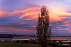 20160612-03-Hobart sunset from the Cenotaph (Roger T Wong) Tags: sunset orange clouds evening australia tasmania hobart cenotaph domain 2016 sony2470 rogertwong sel2470z sonyfe2470mmf4zaosscarlzeissvariotessart sonya7ii sonyilce7m2 sonyalpha7ii