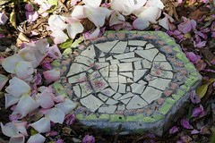 Stepping Stone (pirate_renee) Tags: stone stepping