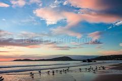 bombas-0066 (iedafunari) Tags: santa praia brasil mar barco gaivotas catarina amanhecer bombas canoa bombinhas