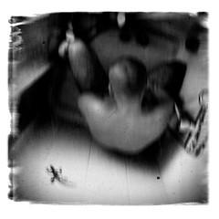 Medicine (P. Correia) Tags: 2011 lisbon tindersticks lisboa iphone3g pcorreia gecko parentaladvisory