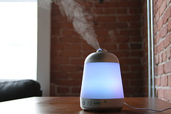 neon essential oil diffuser misting on table (yourbestdigs) Tags: blue mist black green nature fog bottle natural herbs background smoke steam system smell rosemary essential oil medicine eucalyptus therapy diffusion aromatic spa diffuser herbal vapor medicinal peppermint fragrance vaporized humidifier diffuse aroma inhale aromatherapy nontraditional freshener nebulizer therapeutic vaporizer inhalation