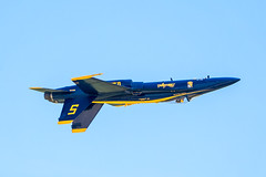 218A7464 (W.L.M.II) Tags: hornet f18 usnavy fa18 fa18hornet navalaviators theblueangels spiritofstlouisairshowstemexpomay2016