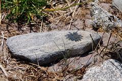 _DSC6683.jpg (newminaswilders) Tags: ca canada nature rocks novascotia portjoli gardensorflowers