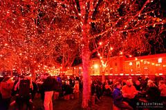 20160616-38-Dark MOFO 2016 Winter Feast (Roger T Wong) Tags: lighting red people food art festival night crowd australia tasmania hobart stalls winterfest 2016 pw1 sony1635 princeswharf1 rogertwong darkmofo sel1635z sonya7ii sonyilce7m2 sonyalpha7ii sonyfe1635mmf4zaosscarlzeissvariotessart