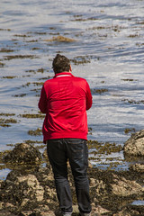 Islay 2016 2 (18) (Yorkshire Reckless & Proud) Tags: blue shadow sea people musician cloud sun lighthouse black bird beach birds silhouette vw landscape scotland boat ship harbour cottage sails tent islay seal duster van camper distillery orsay bowmore bruichladdich dacia