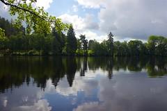 Schlchtsee (a) Tags: outdoor lake blackforest schwarzwald see water clouds wolken nature trees idyllisch idyllic summer sommer spiegelung mirror