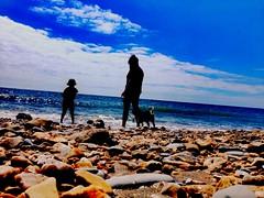 Sillouhets on the beach (strictlybearded) Tags: landscape pebble sea iphone son wife dog love family schoolholidays summer beach lymeregis devon dorset