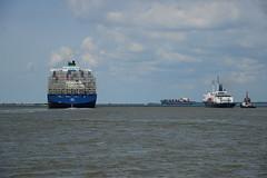 Traffic DST_6089 (larry_antwerp) Tags: stateofmaine dali maerskidaho antwerp antwerpen       port        belgium belgi          schip ship vessel        schelde