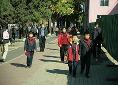 Pyongyang passers by (Frhtau) Tags: dprk north korea korean people leute street scene centre town daily life asia asian east nordkorea passers by passanten architecture building gebude architektur design scenery   choxin  outdoor      corea del norte core du nord coreia do coria    culture landstrase stadt gebudekomplex public information billboard city pyongyang capital square hauptstadt fussgnger