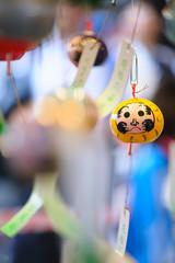 20160720-DS7_9704.jpg (d3_plus) Tags: street building festival japan temple nikon scenery shrine daily architectural telephoto  nostalgic tele streetphoto nikkor  kanagawa   shintoshrine buddhisttemple dailyphoto sanctuary  kawasaki 70210 thesedays       70210mm    holyplace historicmonuments 70210mmf4     70210mmf4af 702104 architecturalstructure d700 nikond700   aiafnikkor70210mmf4s 70210mmf4s
