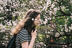 () Tags: pink portrait people girl digital sun sunset sunlight sakura spring park colors cherry blossom green fade flowers forest model wind             nature