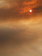 Evening sky through forest fire (Galicia) (danielodyssey (fujilover)) Tags: forest fire galicia evening sunset smoke pollution summer