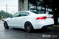 Jaguar XE with 20in Savini BM13 Wheels and Pirelli PZero Tires (Butler Tires and Wheels) Tags: jaguarxewith20insavinibm13wheels jaguarxewith20insavinibm13rims jaguarxewithsavinibm13wheels jaguarxewithsavinibm13rims jaguarxewith20inwheels jaguarxewith20inrims jaguarwith20insavinibm13wheels jaguarwith20insavinibm13rims jaguarwithsavinibm13wheels jaguarwithsavinibm13rims jaguarwith20inwheels jaguarwith20inrims xewith20insavinibm13wheels xewith20insavinibm13rims xewithsavinibm13wheels xewithsavinibm13rims xewith20inwheels xewith20inrims 20inwheels 20inrims jaguarxewithwheels jaguarxewithrims xewithwheels xewithrims jaguarwithwheels jaguarwithrims jaguar xe jaguarxe savinibm13 savini 20insavinibm13wheels 20insavinibm13rims savinibm13wheels savinibm13rims saviniwheels savinirims 20insaviniwheels 20insavinirims butlertiresandwheels butlertire wheels rims car cars vehicle vehicles tires