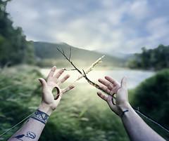 10/365 (lukerenoe) Tags: conceptual self surreal forest light green lukerenoe nature hands tattoos