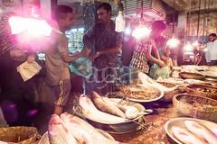 H504_3537 (bandashing) Tags: amborkhana fish market boal catfish carp display lights prawns shrimps shop shopping sylhet manchester england bangladesh bandashing aoa socialdocumentary akhtarowaisahmed
