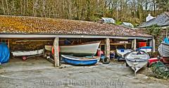 Glendurgan Garden (Muzammil (Moz)) Tags: beach cornwall lizard fisheyelens newquey glendurgangarden afraaz muzammilhussain mozhaps canon815mm canon5dmark3 mozhapsyahoocouk parkdeancaravanpark