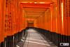 Fushimi Inari-Taisha 伏見稲荷大社 (Rodrigo A. Santoveña) Tags: voyage trip travel viaje red travelling japan eos gate shrine inari traveller route 日本 nippon shinto torii sanctuary nihon fushimiinari santuario fushimi japón fushimiinaritaisha kyōto 京都市 inaritaisha sintoismo 伏見区 sintoista eos600d