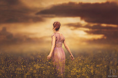 Kansas ({jessica drossin}) Tags: flowers light portrait woman girl beautiful field clouds photography alone dress empty dream ponytail wildflowers plaid actions overlays jessicadrossin wwwjessicadrossincom jdbeautifulworldcollection