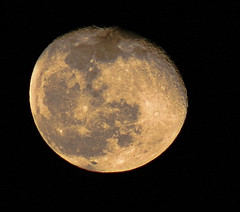 April 2015 Moon (theeqwlzr) Tags: moon crazy fullmoon astrophotography nightsky wtf southerncalifornia canonrebelxti