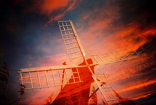 Lomo – sunset sails