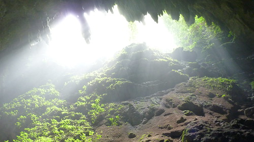 Rio Camuy caves interior humidity (3)