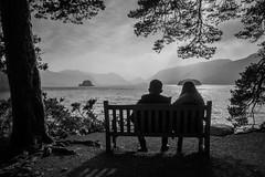 Bench romance