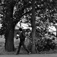 26052015 (M N Edwards) Tags: boy people white man black tree nature contrast 35mm walking reading book student nikon streetphotography aberystwyth 365 d3000
