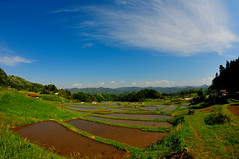 San-nouji-Tanada, One of the best 100 beautiful Terraced rice-fields in Japan (Yohsuke_NIKON_Japan) Tags: nature japan countryside nikon may bluesky fisheye shimane agriculture ricefields izumo terraced sanin 2015   terracedricefields d300s puddyfield  unnann